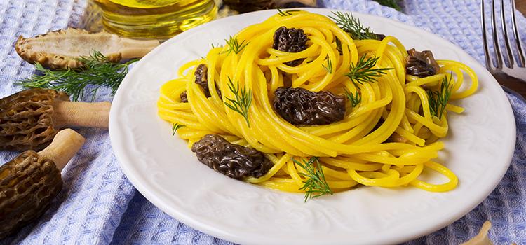Alaska Morels in Pasta For A New Kind Of Meal [Recipe] | ultimatemedicinalmushrooms.com