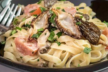 Fettuccine Alfredo with Morels For A Delicious Dinner [Recipe] | ultimatemedicinalmushrooms.com