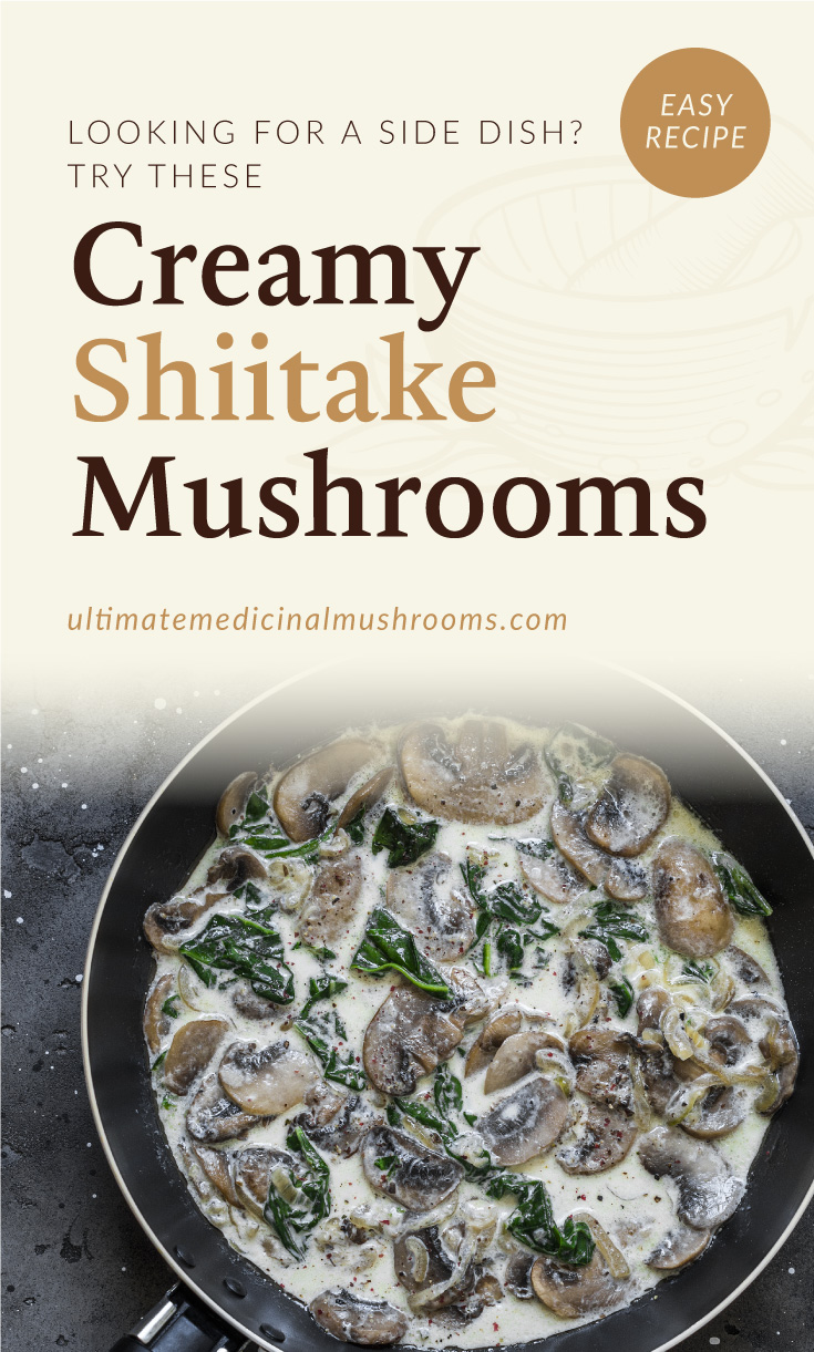 """Text area which says """"Looking For A Side Dish? Try These Creamy Shiitake Mushrooms, ultimatemedicinalmushrooms.com"""" followed by a photo of a creamy mushroom and kale dish in a black pan"""