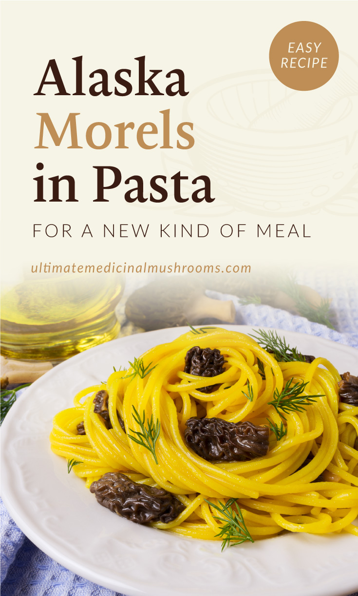 """Text area which says """"Alaska Morels in Pasta For A New Kind Of Meal ultimatemedicinalmushrooms.com"""" followed by a plate of pasta with morel mushrooms"""