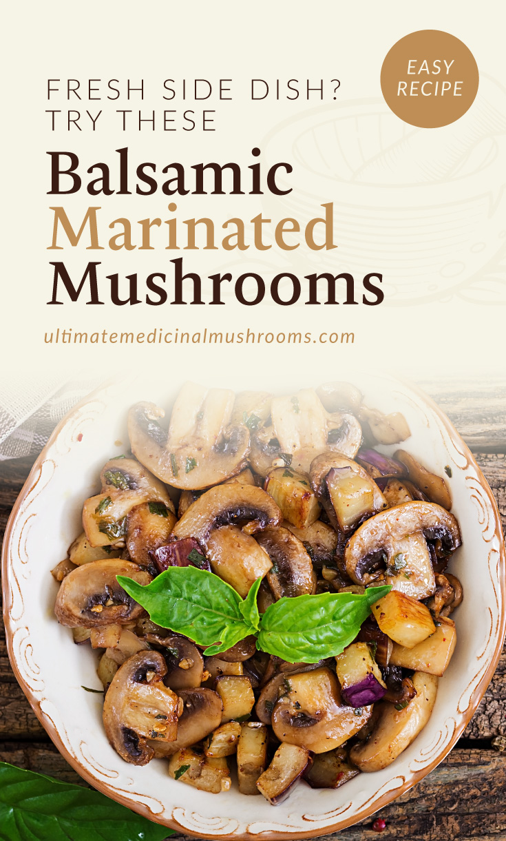 """Text area which says """"Easy Recipe: Fresh Side Dish? Try These Balsamic Marinated Mushrooms, ultimatemedicinalmushrooms.com"""" followed by a photo of a bowl of sauteed mushrooms"""
