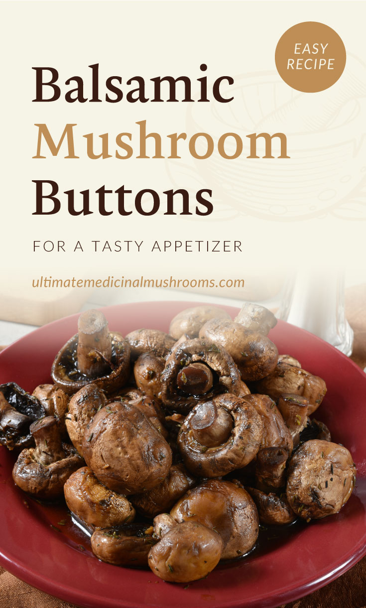 """Text area which says """"Balsamic Mushroom Buttons For A Tasty Appetizer, ultimatemedicinalmushrooms.com"""" followed by a balsamic mushroom dish on a red plate"""
