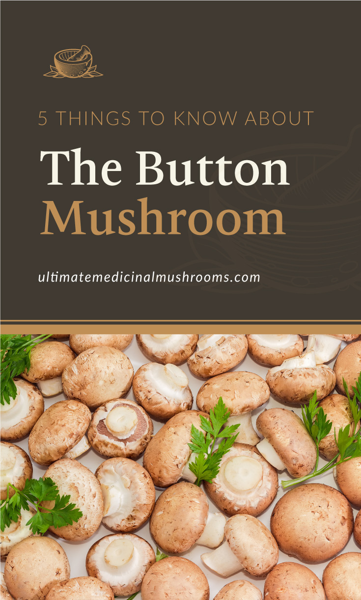 """Text area which says """"5 Things To Know About The Button Mushroom, ultimatemedicinalmushrooms.com"""" followed by uncooked brown button mushrooms with parsley twigs laid out on a light surface"""