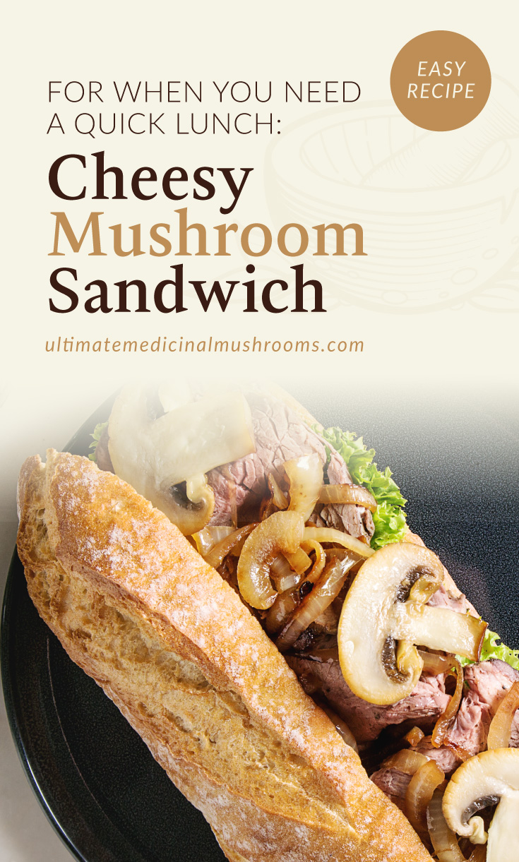 """Text area which says """"For When You Need a Quick Lunch: Cheesy Mushroom Sandwich, ultimatemedicinalmushrooms.com"""" followed by a photo of a cheesy mushroom baguette sandwich"""