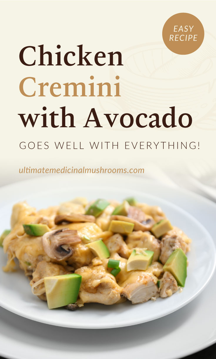 """Text area which says """"Chicken Cremini with Avocado Goes Well With Everything!, ultimatemedicinalmushrooms.com"""" followed by chicken with mushrooms and avocados on a plate"""