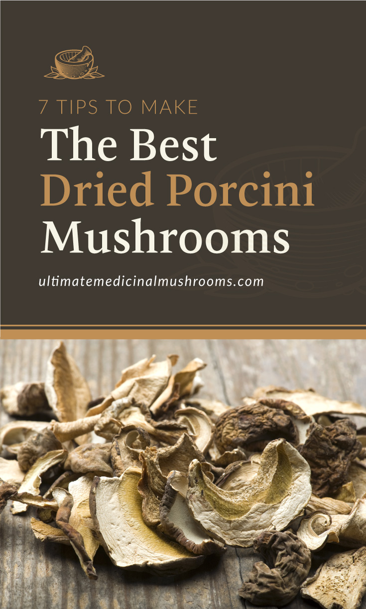"""Text area which says """"7 Tips To Make The Best Dried Porcini Mushrooms, ultimatemedicinalmushrooms.com"""" followed by a photo of dried porcini mushrooms on a wooden surface"""