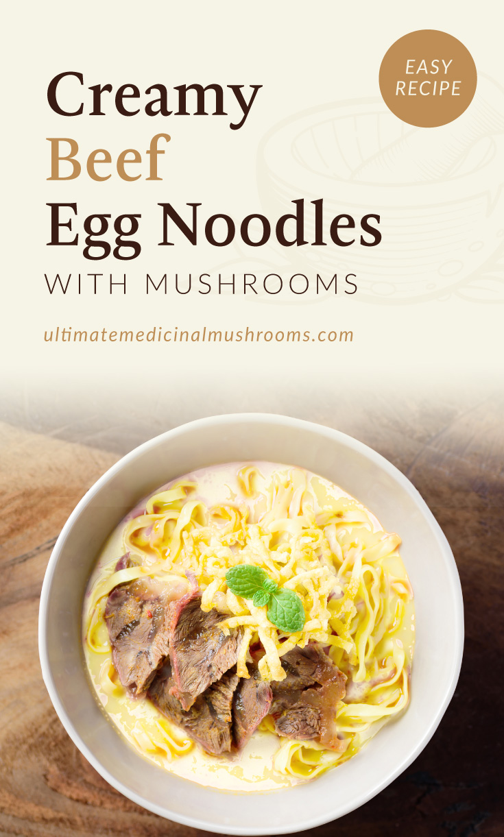 """Text area which says """"Tender Chicken Breast with Buttered Mushroom Sauce, Easy Recipe,ultimatemedicinalmushrooms.com"""" followed by a photo of a bowl of egg noodles with mushroom"""