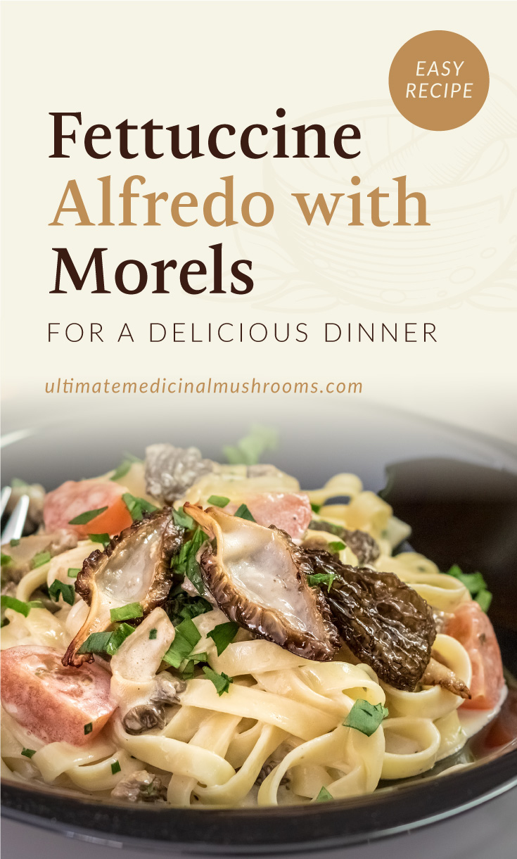 """Text area which says """"Fettuccine Alfredo with Morels For A Delicious Dinner ultimatemedicinalmushrooms.com"""" followed by a plate of fettuccine alfredo with morel mushrooms"""