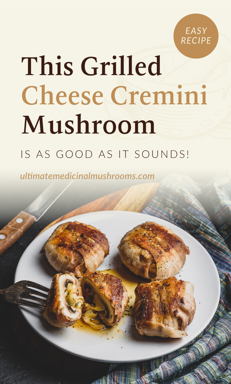 """Text area which says """"This Grilled Cheese Cremini Mushroom Is As Good As It Sounds!, ultimatemedicinalmushrooms.com"""" followed by small pieces of bacon-wrapped grilled mushrooms with cheese on a plate"""