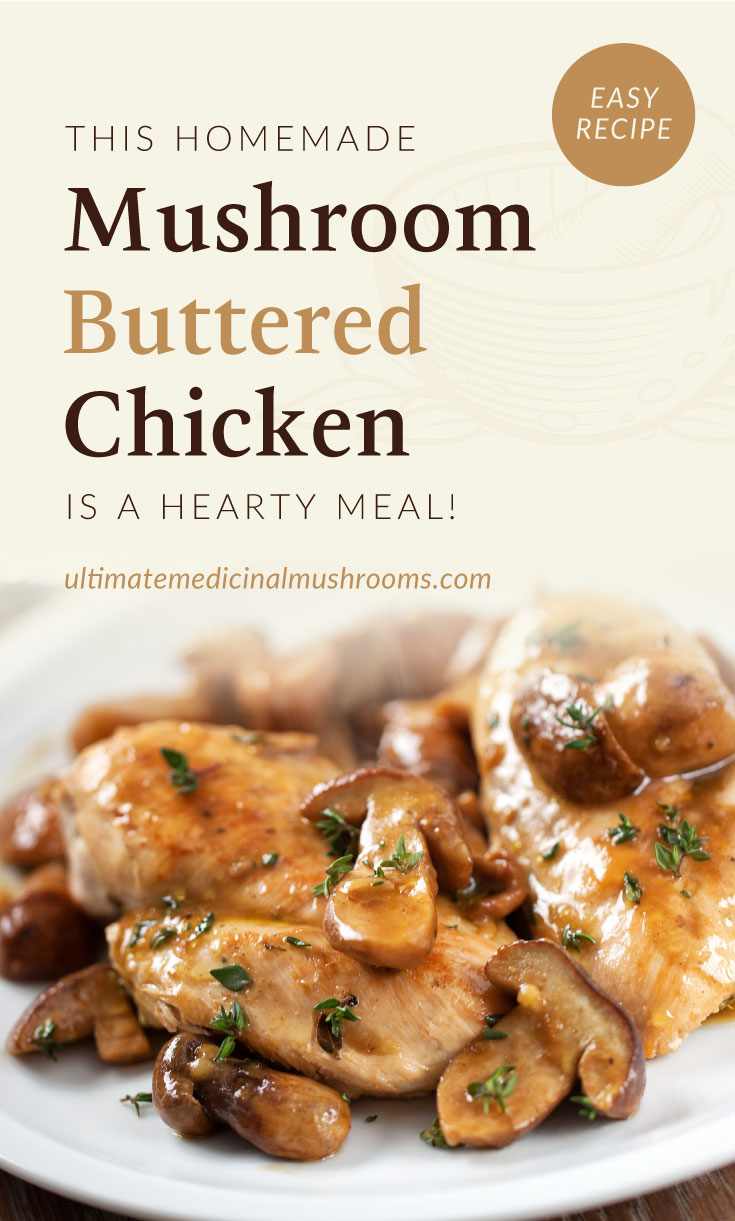"""Text area which says """"This Homemade Mushroom Buttered Chicken Is A Hearty Meal!, ultimatemedicinalmushrooms.com"""" followed by a close-up view of buttered chicken with mushrooms on a plate"""