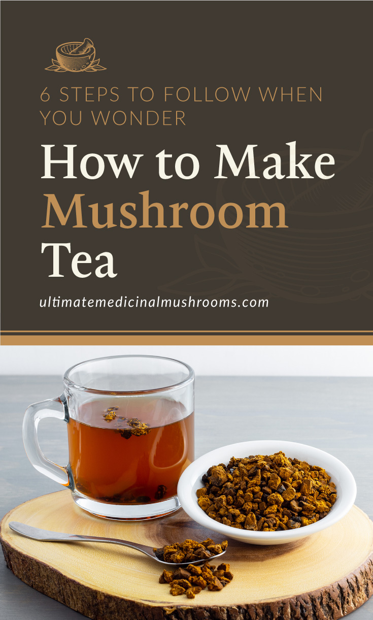 """Text area which says """"6 Steps to Follow When You Wonder How to Make Mushroom Tea, ultimatemedicinalmushrooms.com"""" followed by a photo of chaga mushroom tea in a clear cup"""