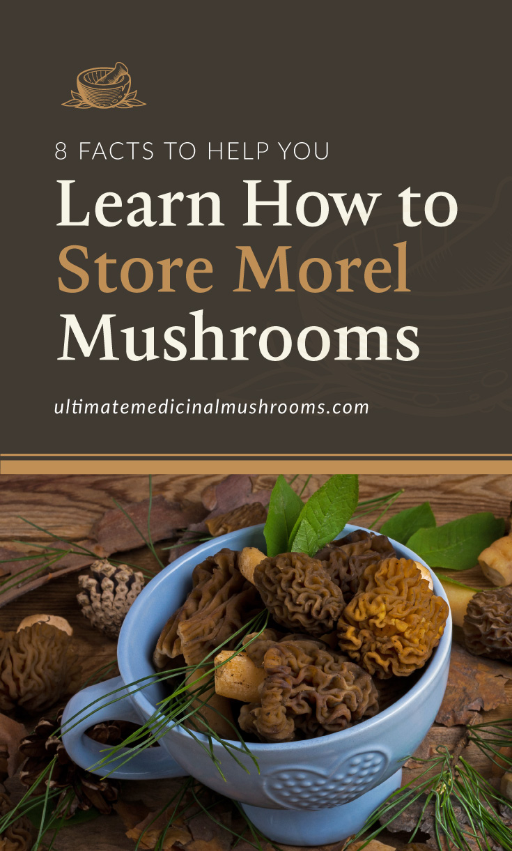 """Text area which says """"8 Facts to Help You Learn How to Store Morel Mushrooms"""" Questions , ultimatemedicinalmushrooms.com"""" followed by a photo of a bowl full of morel mushrooms"""
