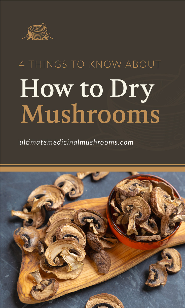 """Text area which says """"4 Things To Know About How To Dry Mushrooms, ultimatemedicinalmushrooms.com"""" followed by dried button mushrooms in a bowl surrounded by more dried mushrooms"""