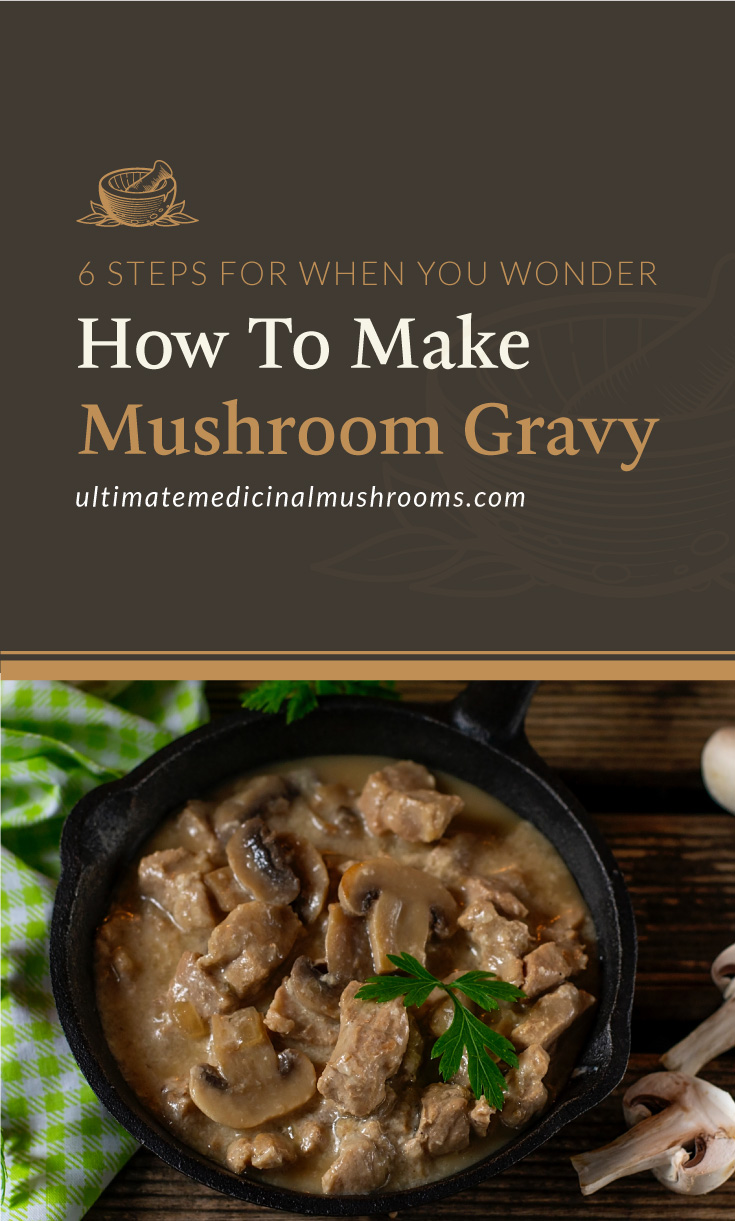 """Text area which says """"6 Steps For When You Wonder How To Make Mushroom Gravy, ultimatemedicinalmushrooms.com"""" followed by a pork stew in pan with mushrooms in creamy sauce served with parsley"""