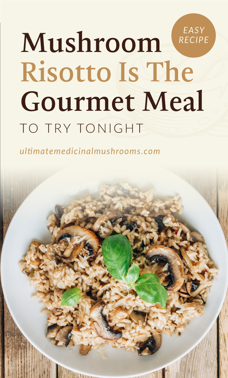 """Text area which says """"Mushroom Risotto Is The Gourmet Meal To Try Tonight ultimatemedicinalmushrooms.com"""" followed by a photo of a mushroom risotto on a white plate"""
