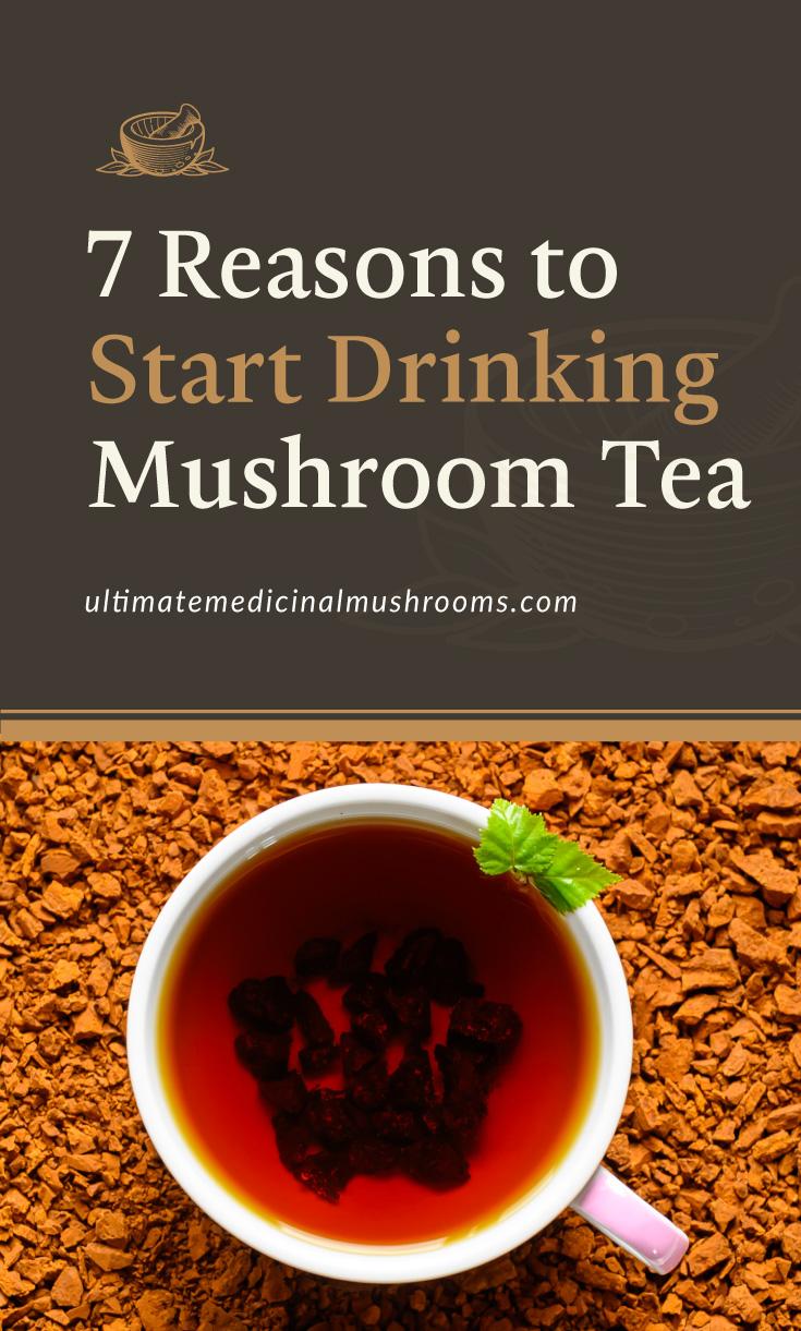 "Text area which says ""7 Reasons To Start Drinking Mushroom Tea , ultimatemedicinalmushrooms.com"" followed by a photo of a cup of chaga mushroom tea surrounded by dried bits of chaga mushrooms"