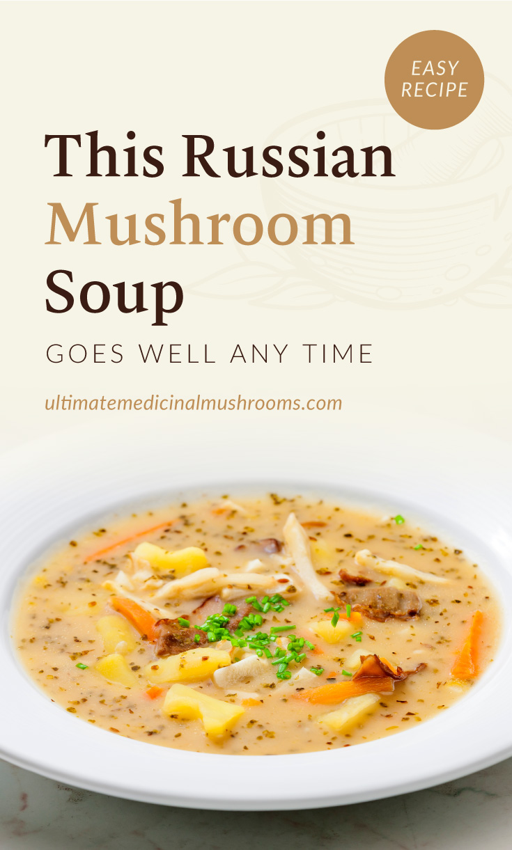 """Text area which says """"This Russian Mushroom Soup Goes Well Any Time, ultimatemedicinalmushrooms.com"""" followed by a close-up view of mushroom soup with carrots and potatoes"""