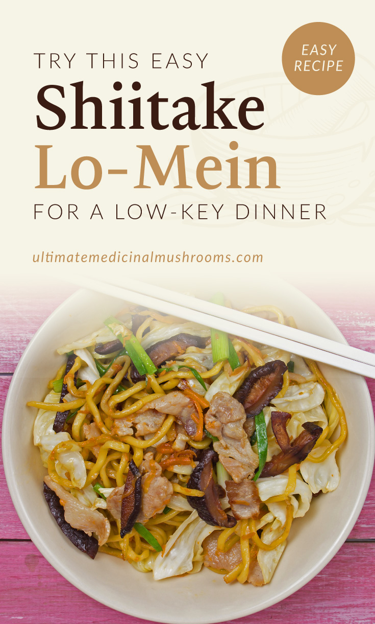 """Text area which says """"Try This Easy Shiitake Lo-Mein For A Low-Key Dinner, ultimatemedicinalmushrooms.com"""" followed by a photo of a bowl of lo mein noodles with shiitake mushrooms and mixed vegetables"""