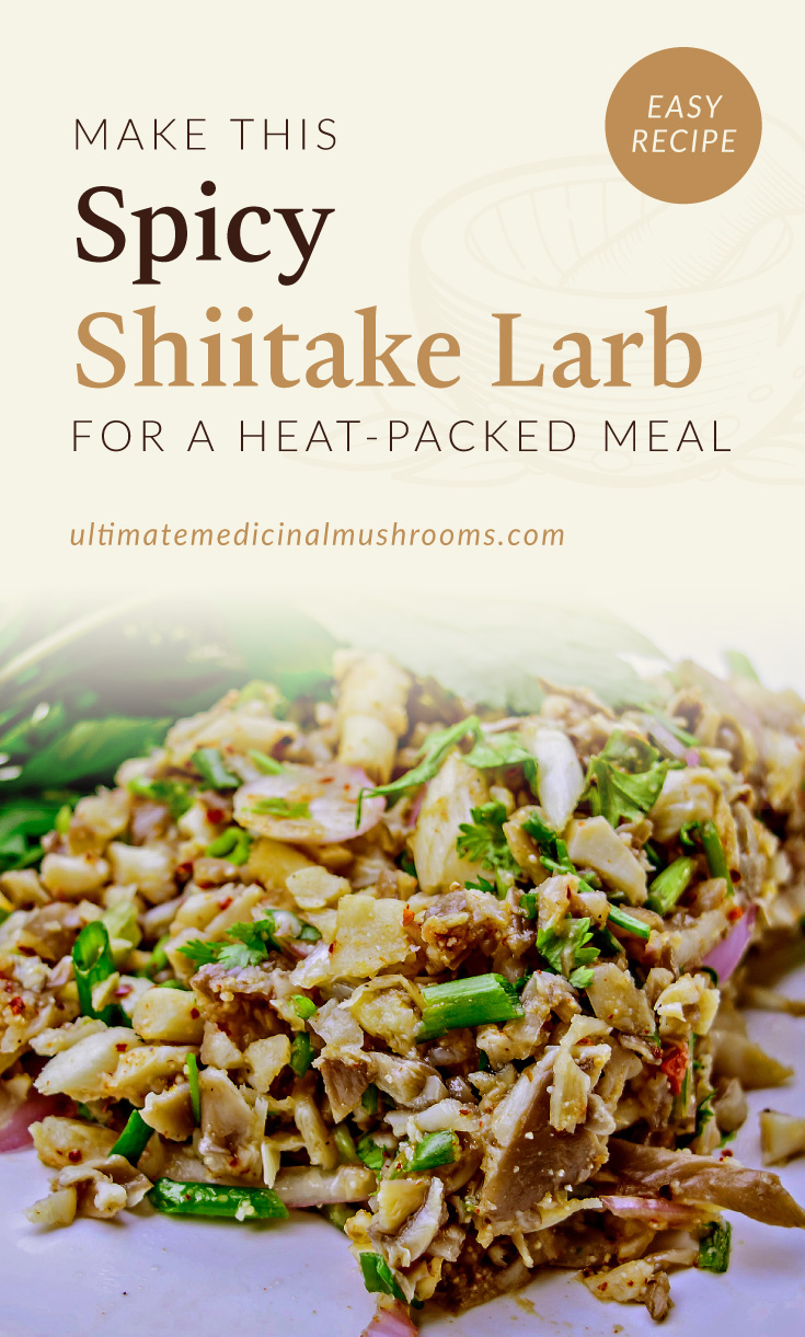 """Text area which says """"Make This Spicy Shiitake Larb For A Heat-Packed Meal ultimatemedicinalmushrooms.com"""" followed by a photo of a mushroom larb salad served on a white plate"""