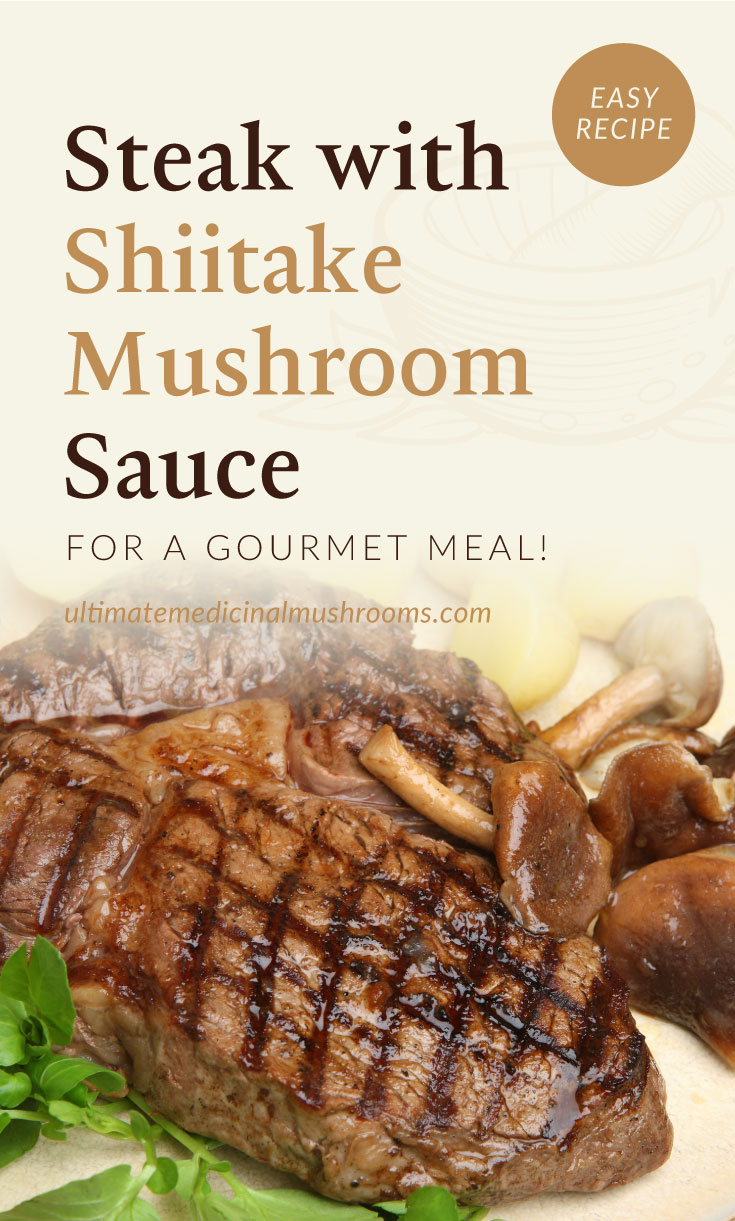 """Text area which says """"Steak with Shiitake Mushroom Sauce For A Gourmet Meal!, ultimatemedicinalmushrooms.com"""" followed by a close-up view of steak paired with mushroom sauce"""
