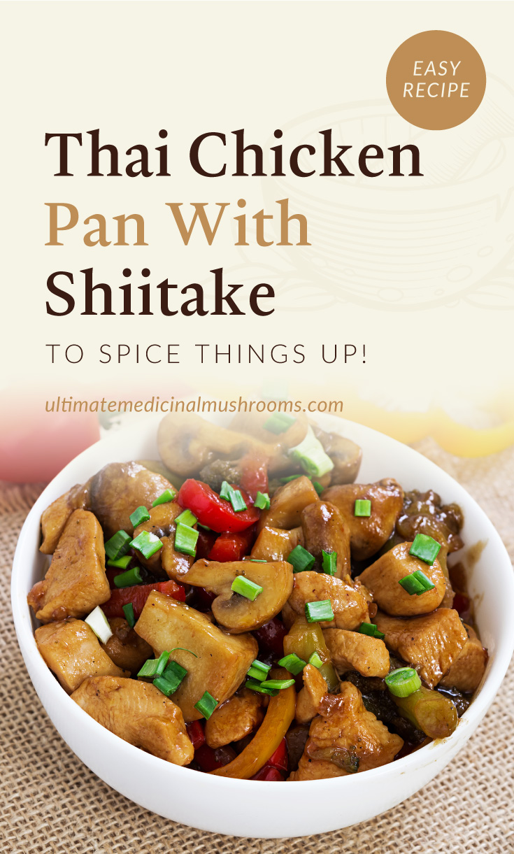 """Text area which says """"Thai Chicken Pan With Shiitake To Spice Things Up!, ultimatemedicinalmushrooms.com"""" followed by a close-up view of a bowl of chicken pan with mushrooms"""
