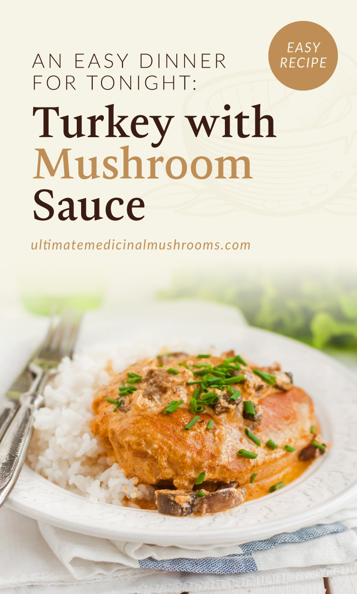 """Text area which says """"An Easy Dinner For Tonight: Turkey With Mushroom Sauce , ultimatemedicinalmushrooms.com"""" followed by a photo of a turkey fillet with mushroom sauce dish served on a plate with a side of rice"""