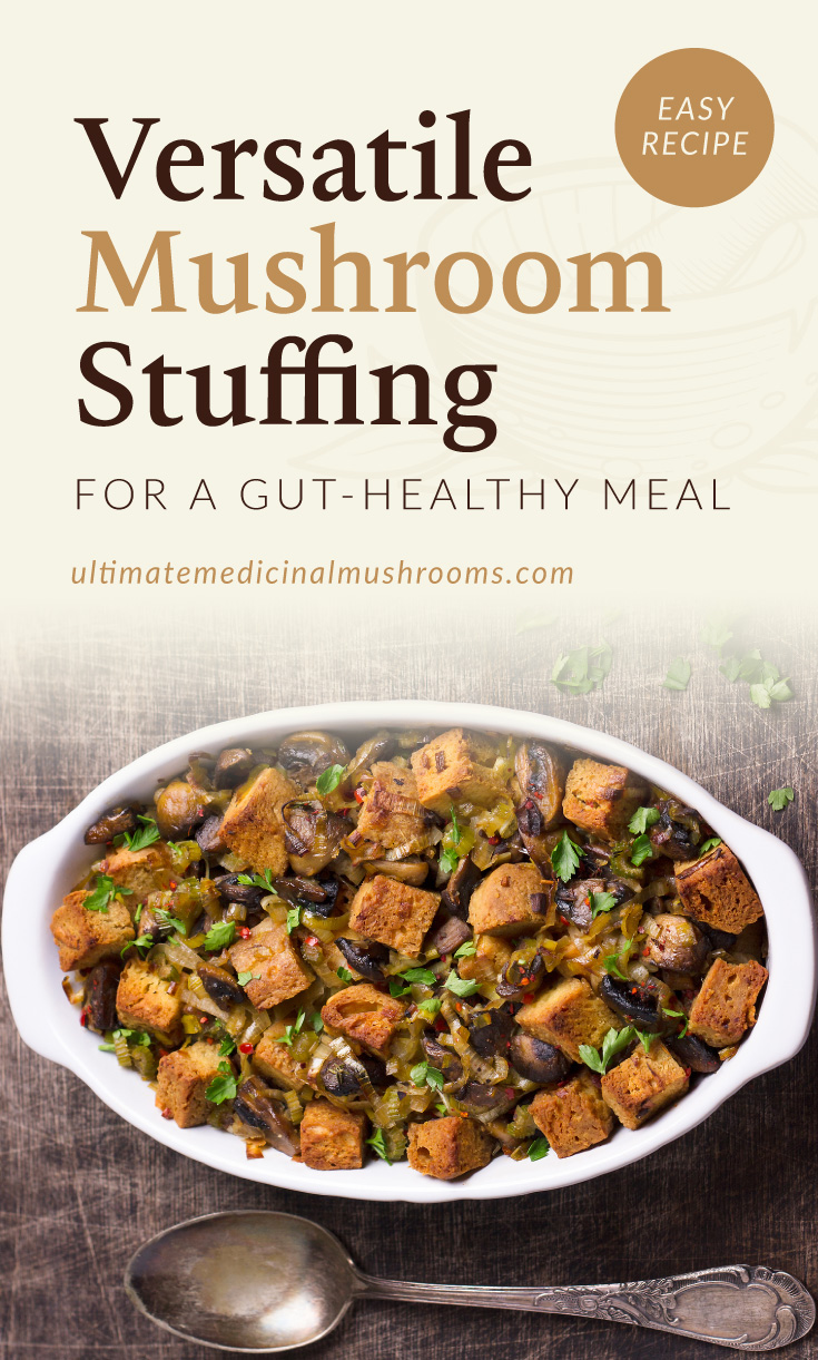 """Text area which says """"Easy recipe, versatile mushroom stuffing for a gut-healthy meal, ultimatemedicinalmushroom.com"""" followed by a plate full of mushroom stuffing"""