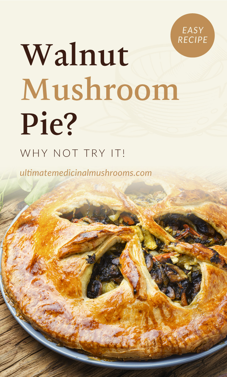 """Text area which says """"Walnut Button Mushroom Pie? Why Not Try It!, ultimatemedicinalmushrooms.com"""" followed by close-up view of a crusty mushroom and walnut pie"""