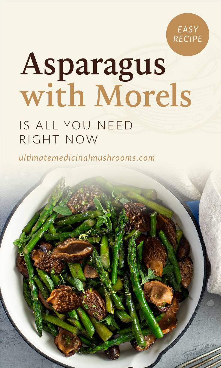 """Text area which says """"Asparagus with Morels Is All You Need Right Now, ultimatemedicinalmushrooms.com"""" followed by a sauteed asparagus and morel mushrooms on a pan"""