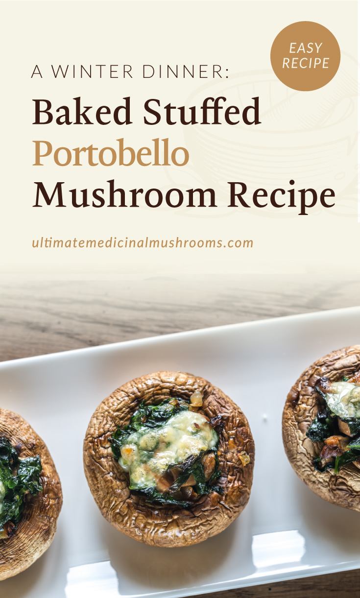 """Text area which says """"A Winter Dinner: Baked Stuffed Portobello Mushroom Recipe , ultimatemedicinalmushrooms.com"""" followed by a Baked mushrooms stuffed with spinach and cheese"""
