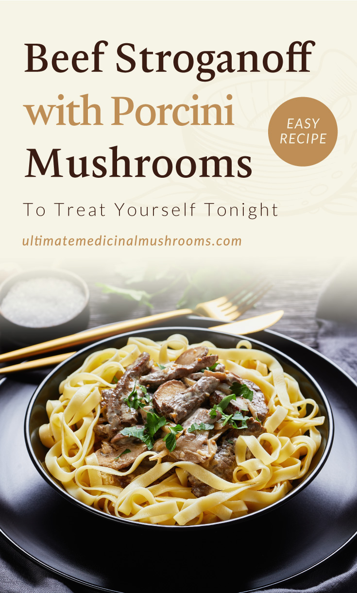 """Text area which says """"Beef Stroganoff with Porcini Mushrooms To Treat Yourself Tonight , ultimatemedicinalmushrooms.com"""" followed by a photo of a Beef Stroganoff with Porcini Mushroom"""