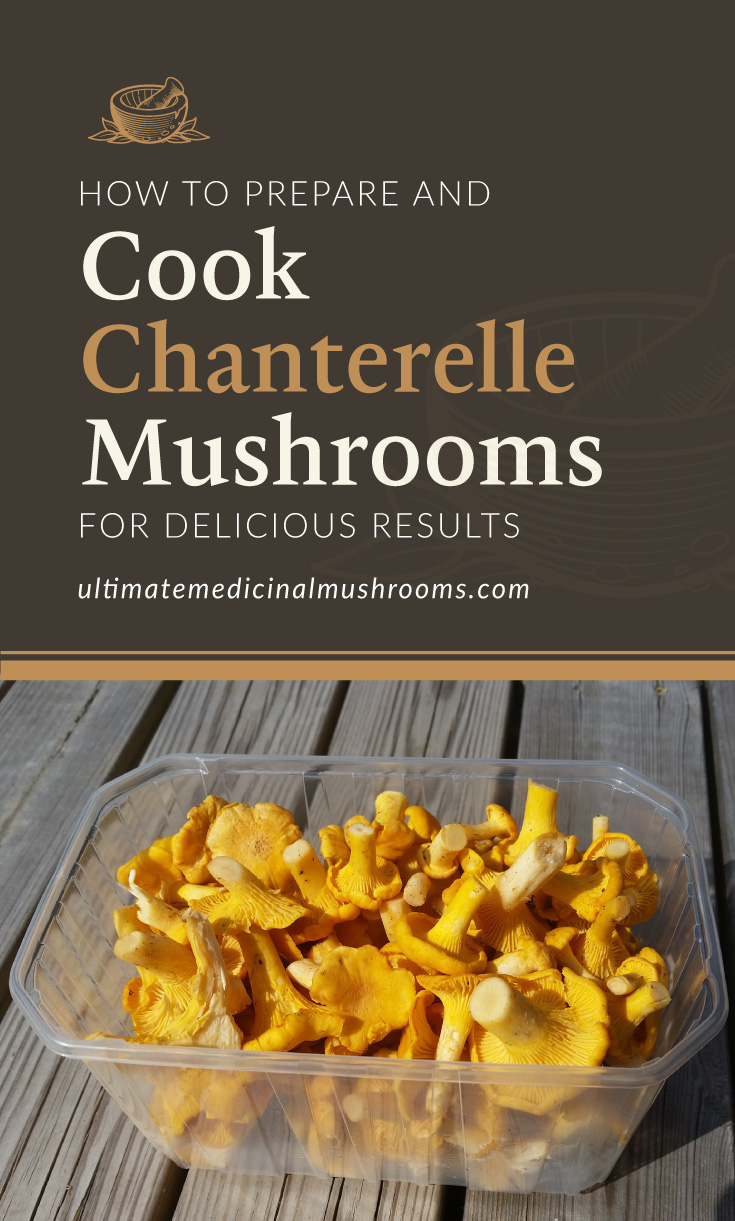 """Text area which says """"How To Prepare and Cook Chanterelle Mushrooms For Delicious Results , ultimatemedicinalmushrooms.com"""" followed by a photo of a clear plastic container fille with chanterelle mushrooms"""