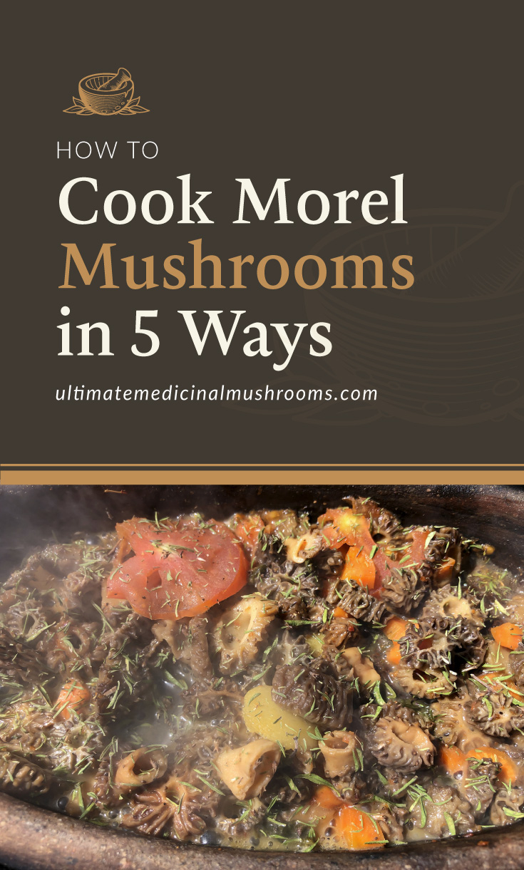 """Text area which says How to Cook Morel Mushrooms in 5 Ways, ultimatemedicinalmushrooms.com"""" followed by a photo -"""