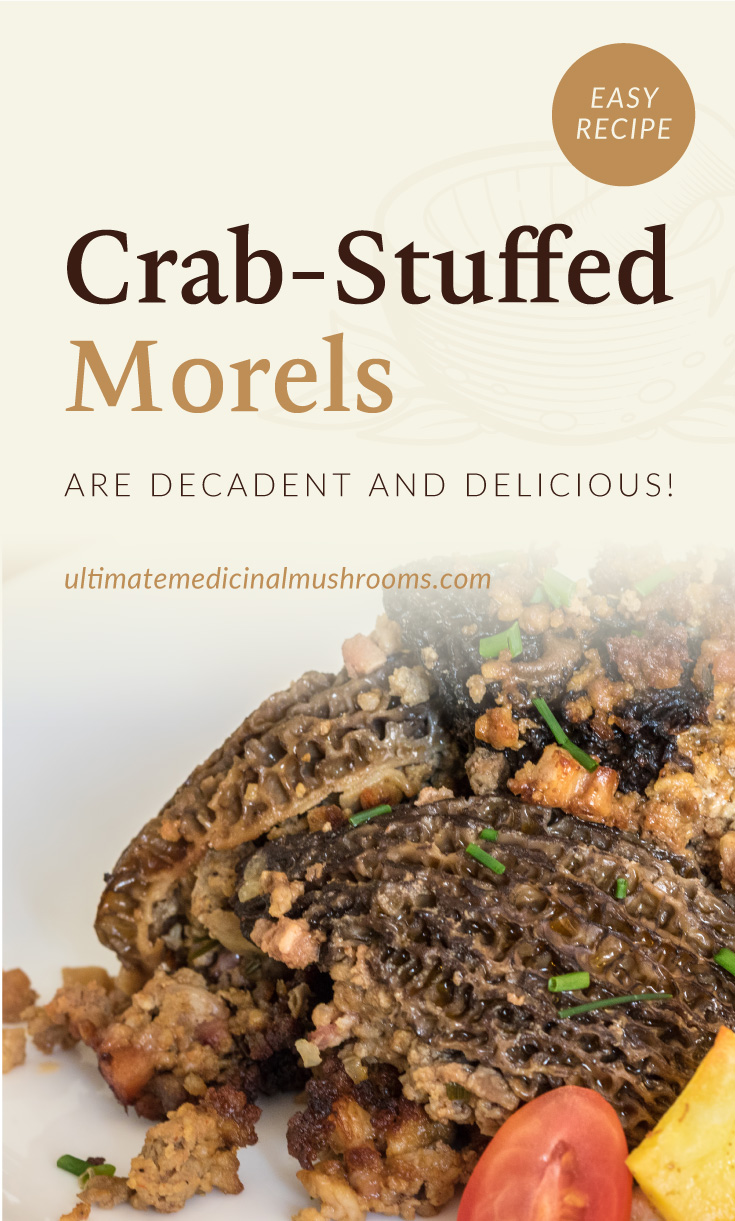 """Text area which says """"Crab-Stuffed Morels Are Decadent And Delicious!, ultimatemedicinalmushrooms.com"""" followed by a close-up view of crab-stuffed morels"""