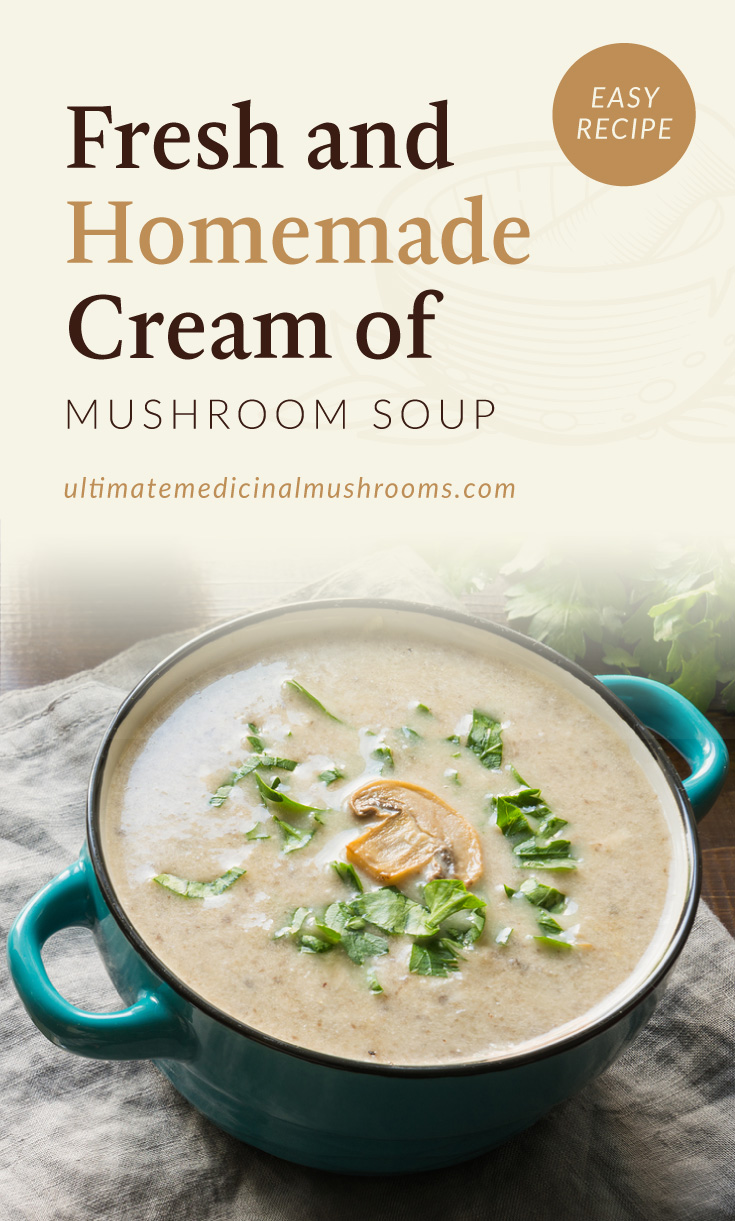 """Text area which says """"Fresh and Homemade Cream of Mushroom Soup, Easy Recipe, ultimatemedicinalmushrooms.com"""" followed by a photo of a blue pot of cream of mushroom soup"""