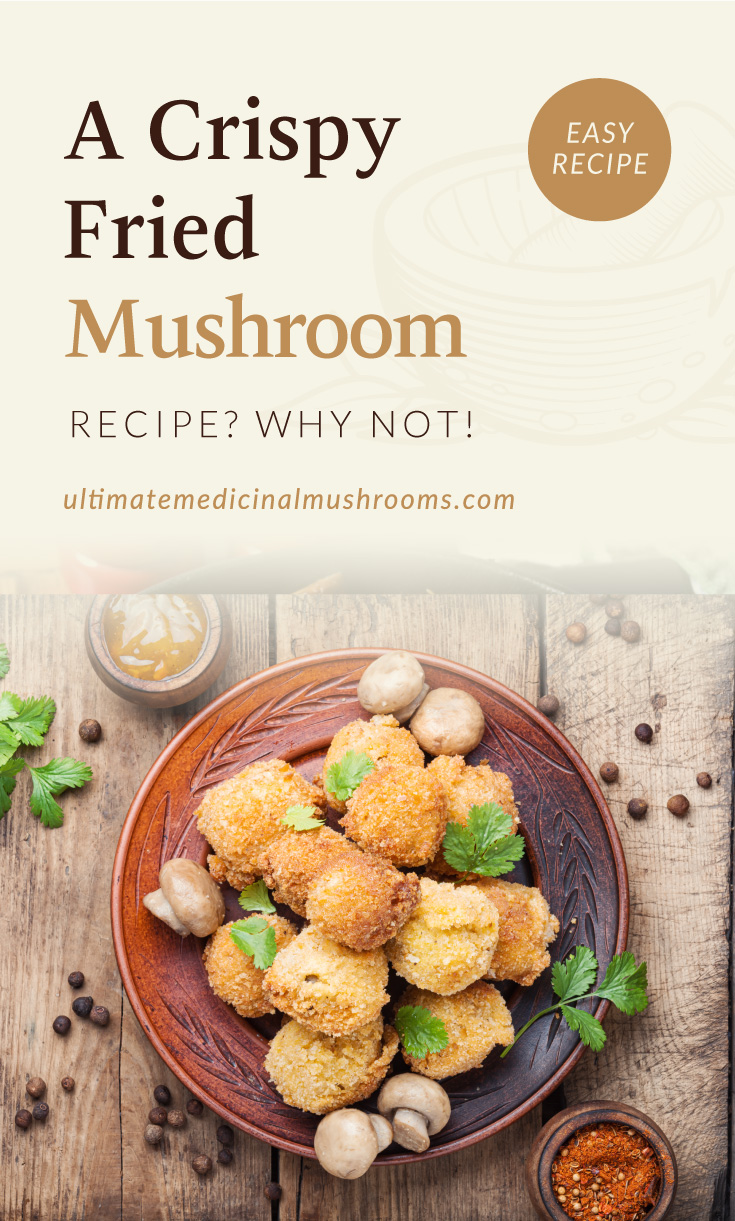 """Text area which says """"A Crispy Fried Mushroom Recipe? Why not! , ultimatemedicinalmushrooms.com"""" followed by a  Homemade breaded mushrooms"""