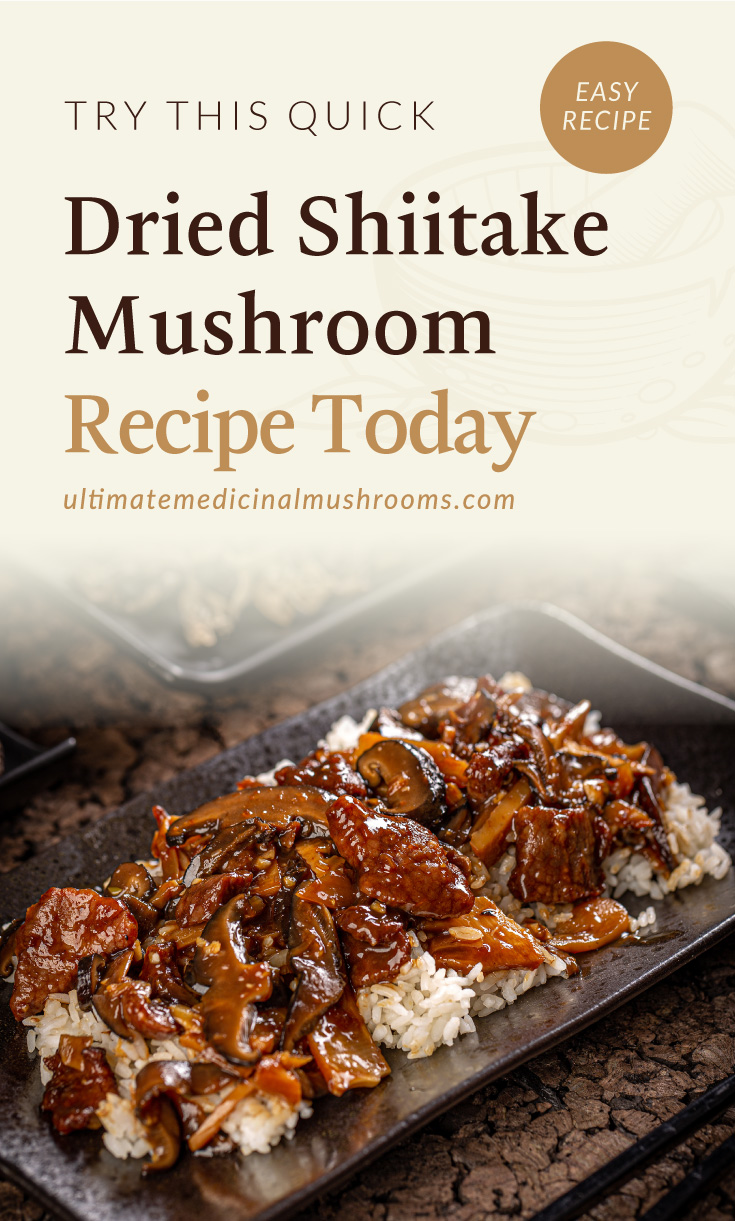 """Text area which says """"Try This Quick Dried Shiitake Mushroom Recipe Today , ultimatemedicinalmushrooms.com"""" followed by a glazed shiitake mushroom served with white rice, chinese cuisine"""