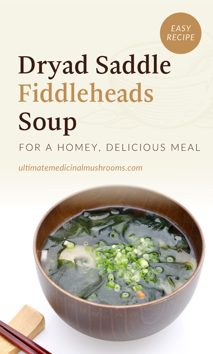 """Text area which says """"Dryad Saddle Fiddleheads Soup for A Homey, Delicious Meal, ultimatemedicinalmushrooms.com"""" followed by a bowl of pheasant back mushroom and fiddleheads soup topped with sliced green garlic"""