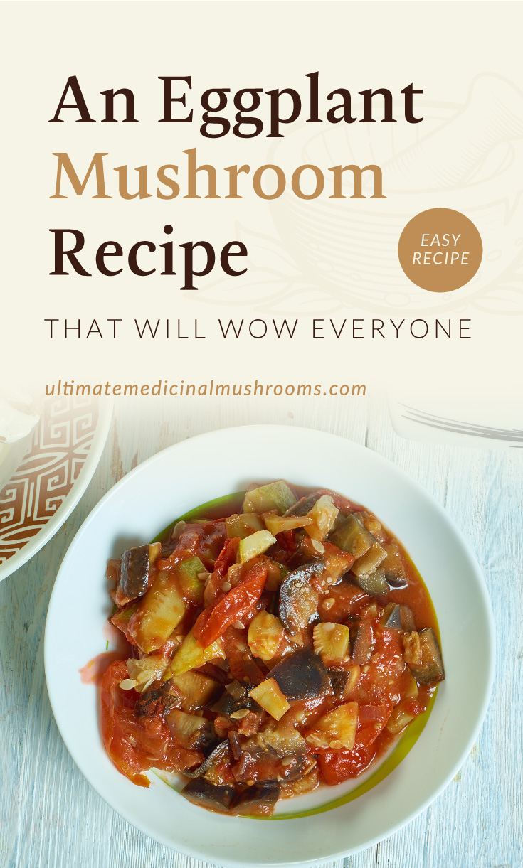 """Text area which says """"An Eggplant Mushroom Recipe That Will Wow Everyone , ultimatemedicinalmushrooms.com"""" followed by a roasted eggplant salsa with mushroom and zucchini"""