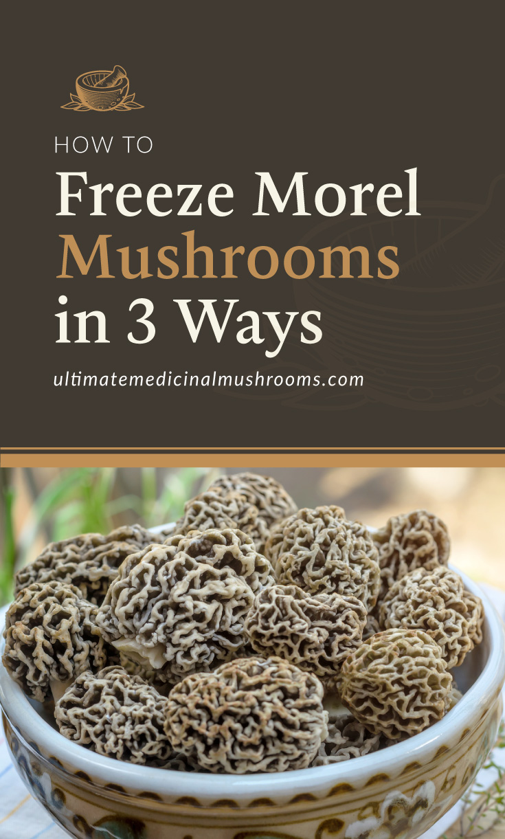 """Text area which says How to Freeze Morel Mushrooms in 3 Ways, ultimatemedicinalmushrooms.com"""" followed by a photo -"""