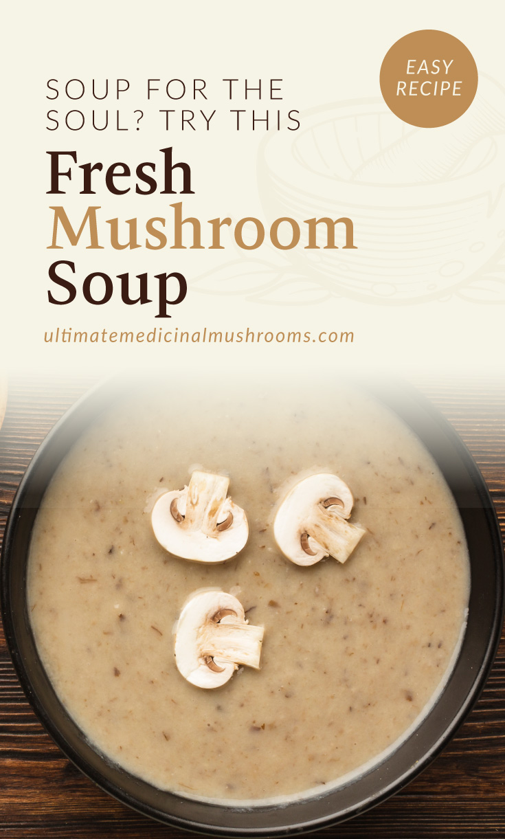 """Text area which says """"soup for the soul? try this Fresh Mushroom Soup, ultimatemedicinalmushrooms.com"""" followed by a top-view photo of a soup with mushroom slices on top"""