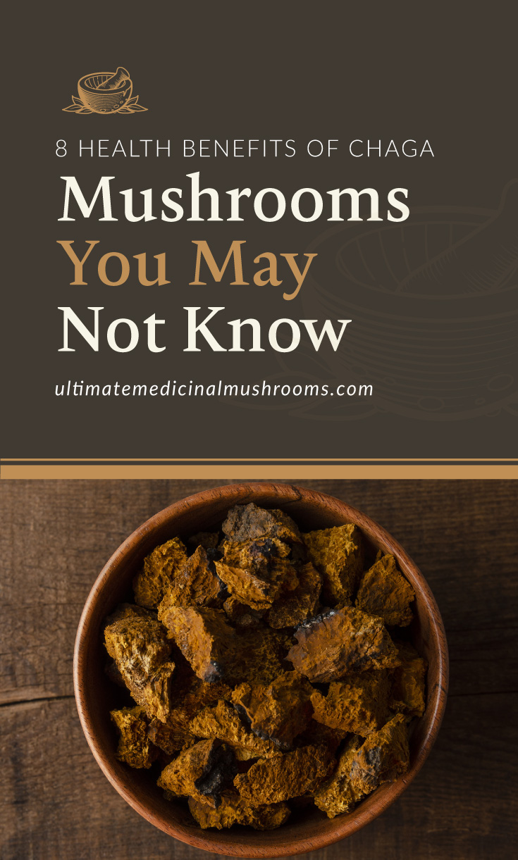 """Text area which says """"8 Health Benefits of Chaga Mushrooms You May Not Know, ultimatemedicinalmushrooms.com"""" followed by a photo of a bowl of mushrooms"""