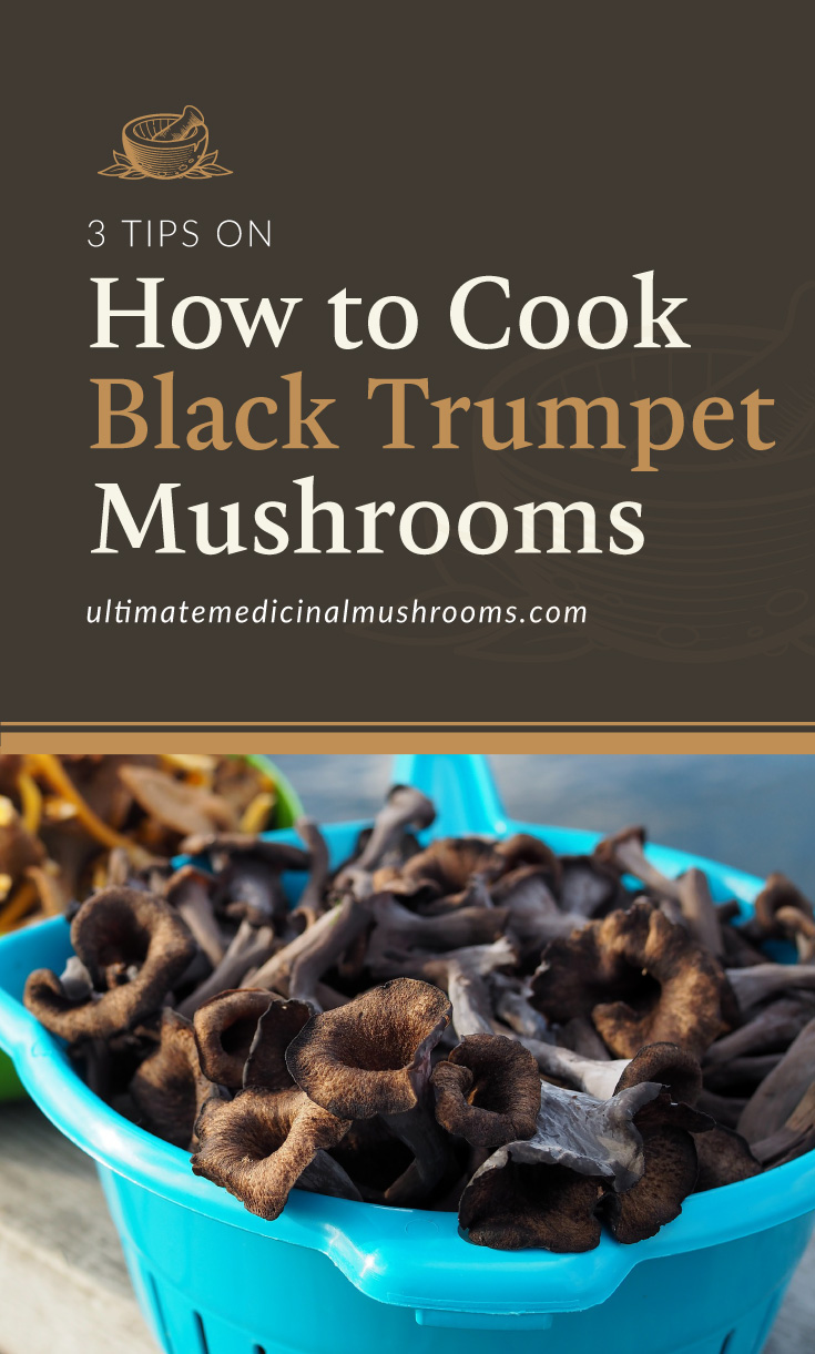 """Text area which says """"3 Tips on How to Cook Black Trumpet Mushrooms , ultimatemedicinalmushrooms.com"""" followed by a photo of a morel mushroom growing on the forest grounds"""