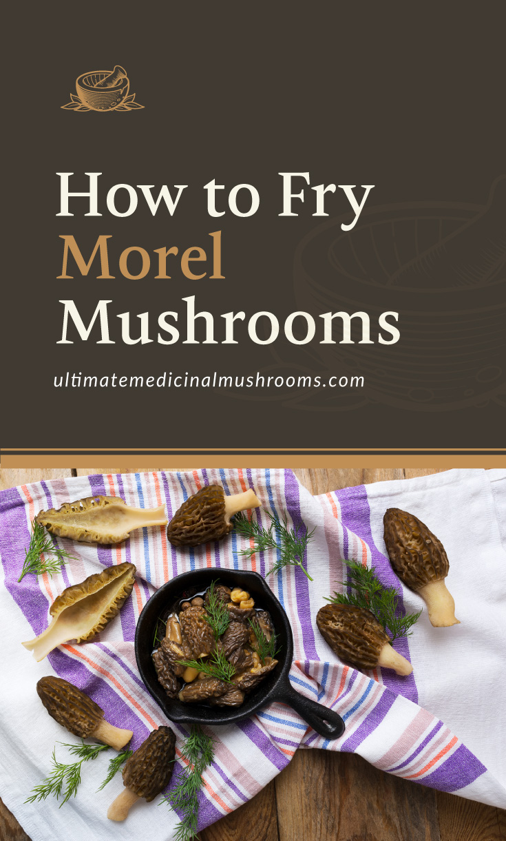 """Text area which says """"How to Fry Morel Mushrooms, ultimatemedicinalmushrooms.com"""" followed by a photo of morel mushrooms"""