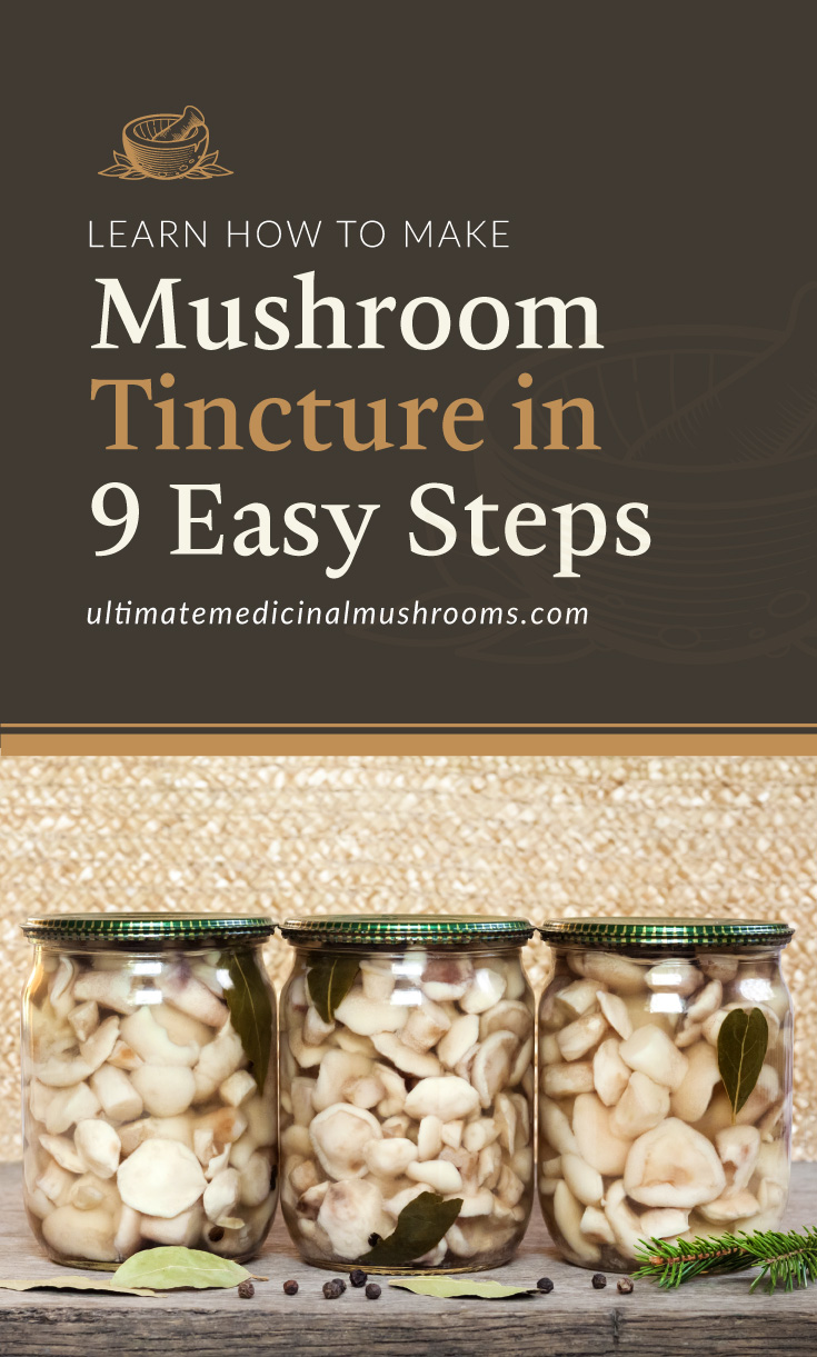 """Text area which says """"Learn How to Make Mushroom Tincture in 9 Easy Steps, ultimatemedicinalmushrooms.com"""" followed by a photo of mushrooms in jars"""