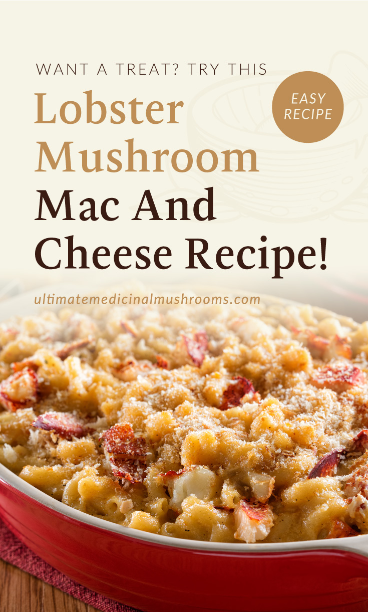 """Text area which says """"Want A Treat? Try This Lobster Mushroom Recipe, ultimatemedicinalmushrooms.com"""" followed by mac and cheese with lobster mushroom in a red baking dish"""