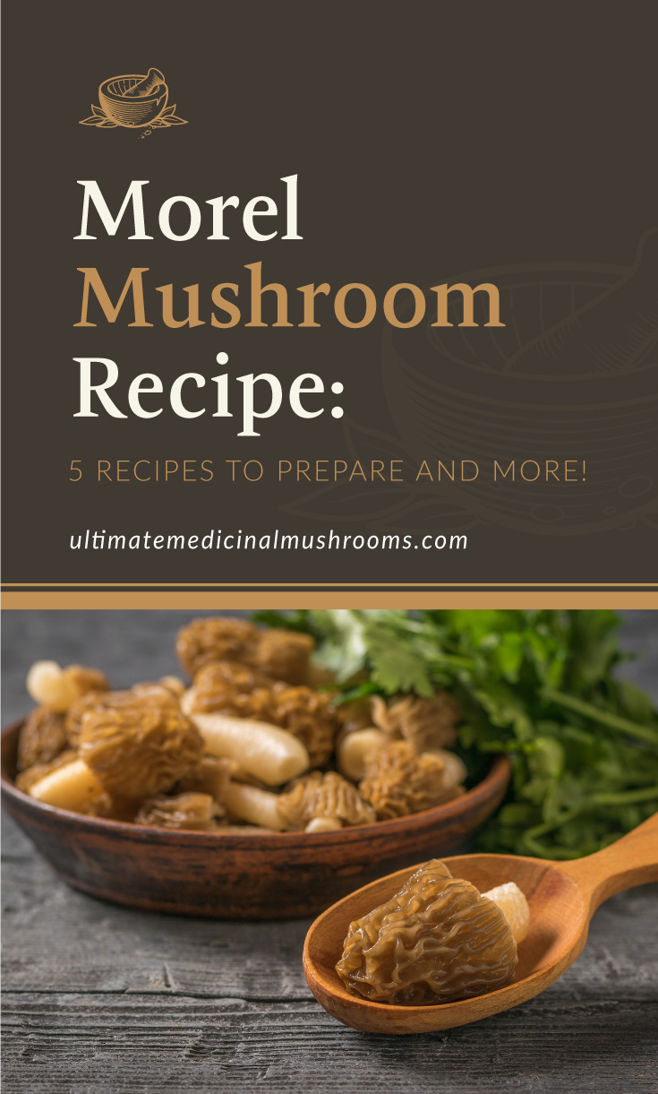 """Text area which says """"Morel Mushroom Recipe: 5 Recipes To Prepare And More!, ultimatemedicinalmushrooms.com"""" followed by a bowl of morel mushrooms and a morel on a wooden spoon"""