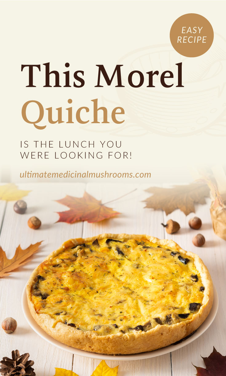 """Text area which says """"This Morel Quiche Is The Lunch You Were Looking For!, ultimatemedicinalmushrooms.com"""" followed by a quiche pie with mushrooms on a plate surrounded by acorns and autumn leaves"""