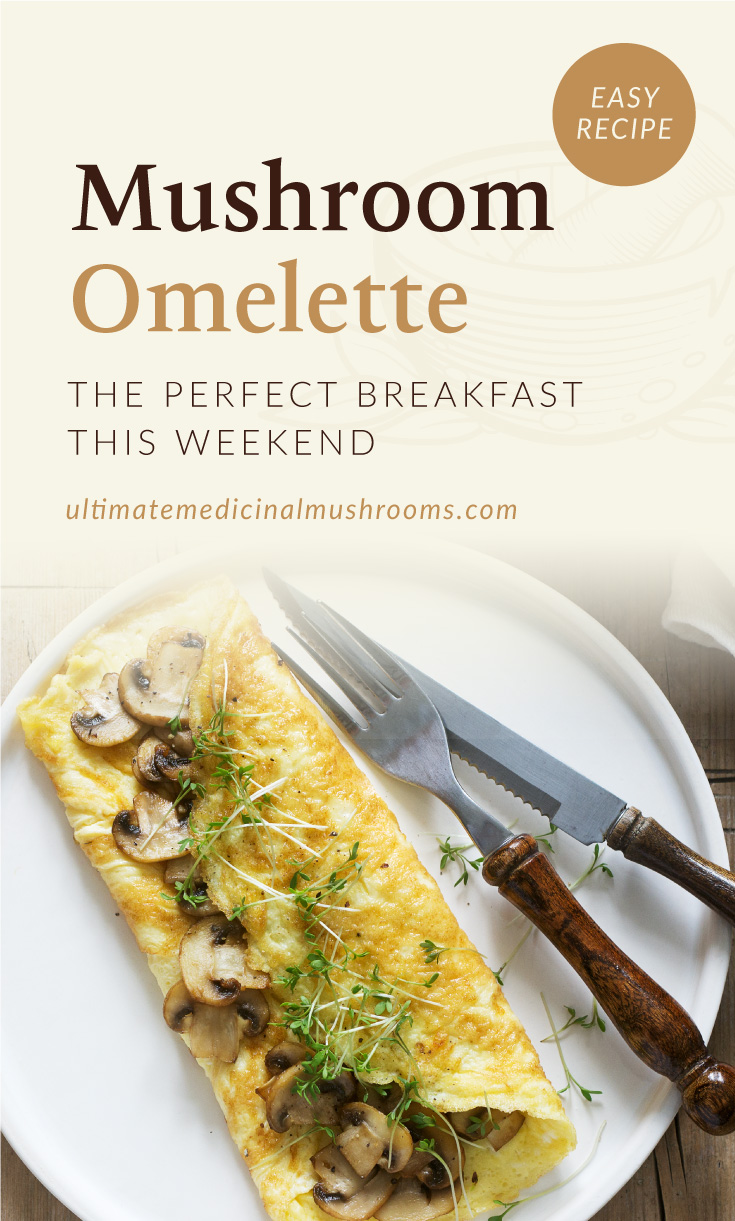 """Text area which says """"Mushroom Omelette? The Perfect Breakfast This Weekend, ultimatemedicinalmushrooms.com"""" followed by a photo of mushroom omelette served on a plate"""