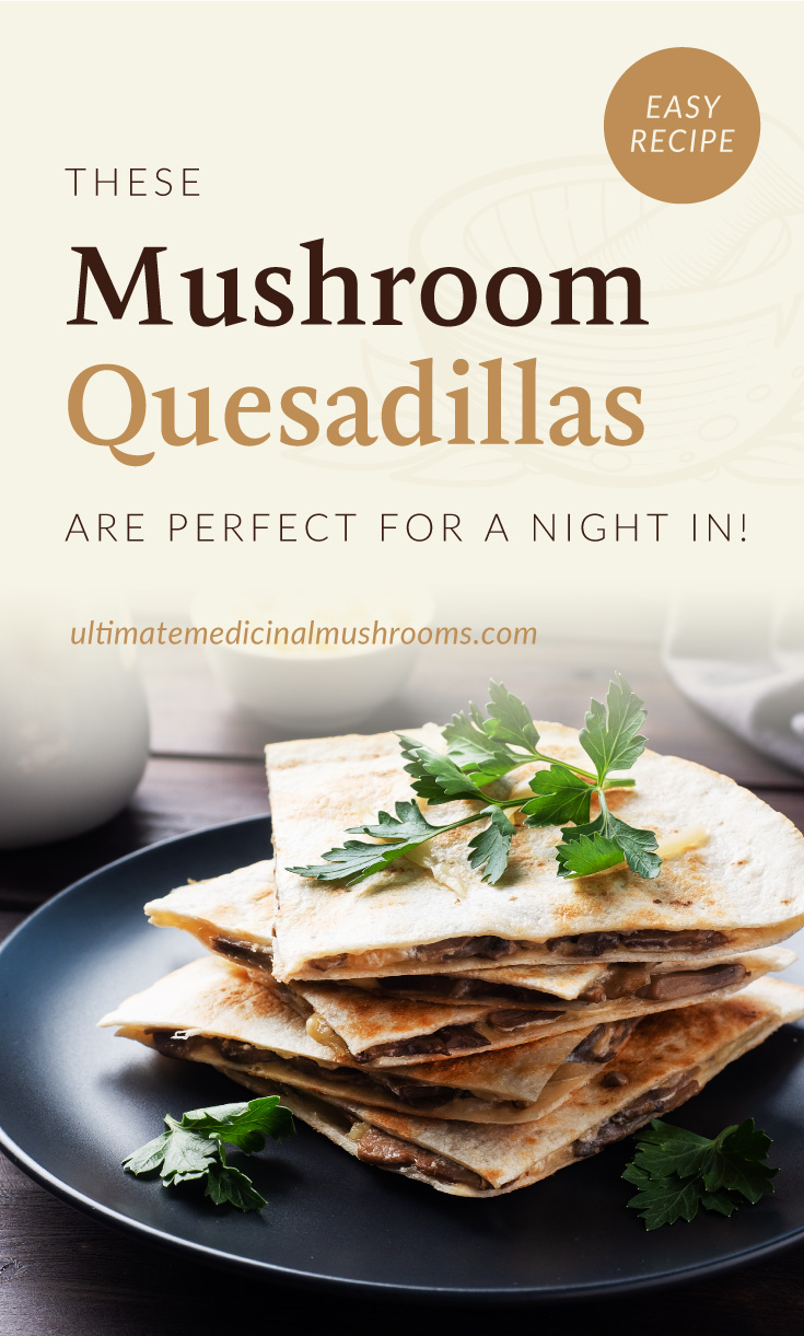 """Text area which says """"These Mushroom Quesadillas Are Perfect For A Night In!, ultimatemedicinalmushrooms.com"""" followed by a small pile of mushroom quesadillas on a plate"""